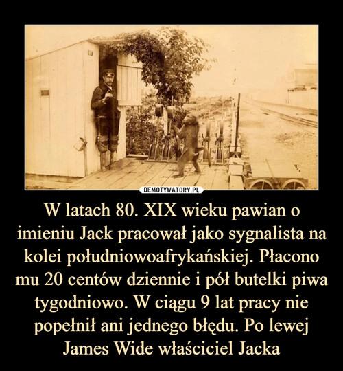 W latach 80. XIX wieku pawian o imieniu Jack pracował jako sygnalista na kolei południowoafrykańskiej. Płacono mu 20 centów dziennie i pół butelki piwa tygodniowo. W ciągu 9 lat pracy nie popełnił ani jednego błędu. Po lewej James Wide właściciel Jacka