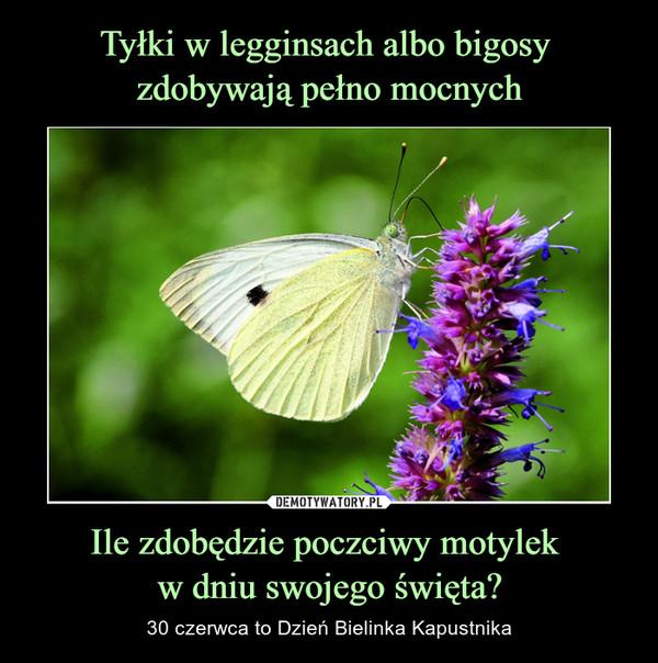 Tyłki w legginsach albo bigosy zdobywają pełno mocnych Ile zdobędzie poczciwy motylek w dniu swojego święta?